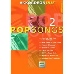 Akkordeon pur pop songs 2