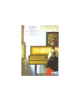 Suite n°2 BWV1067 : Badinerie Bach